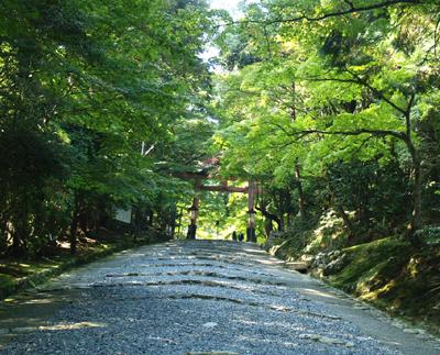 Hiyoshi05_1